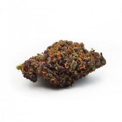 Purple premium 10g